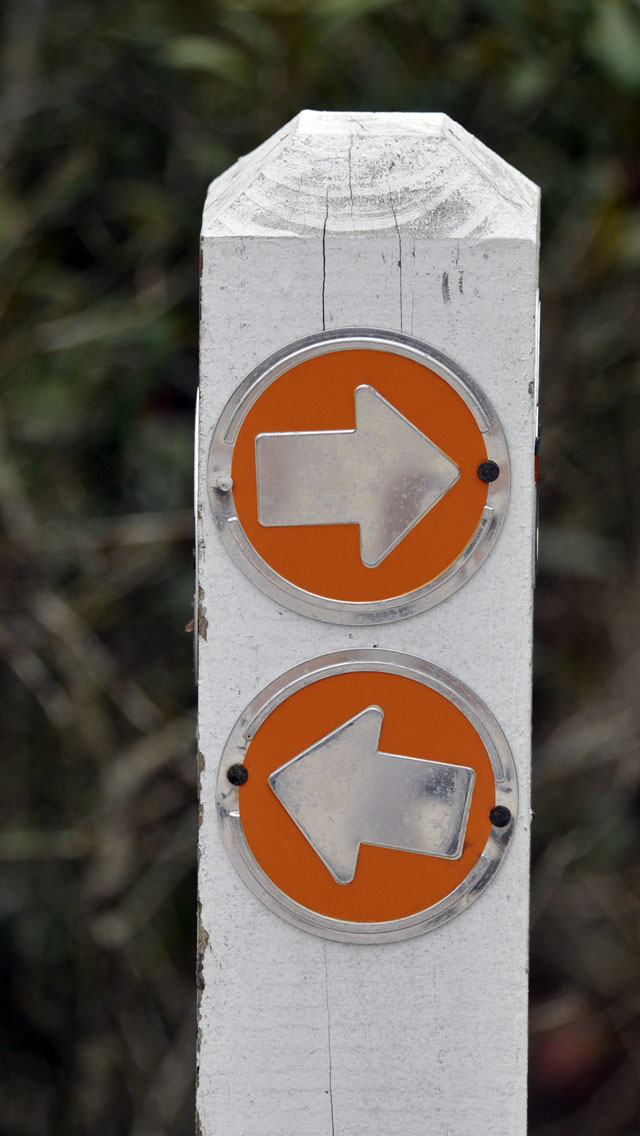 Directional sign (arrows) at Lyonia Preserve in Deltona, Florida