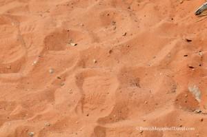 DSC_9157-Red-Rock-Canyon-fo