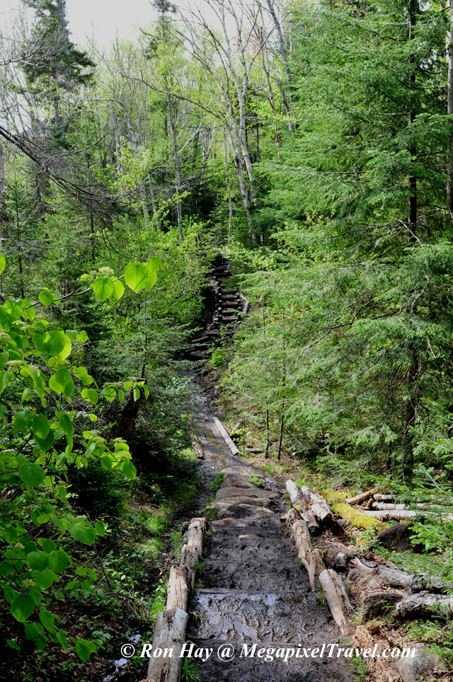 RON_3246-Marcy-Dam-trail