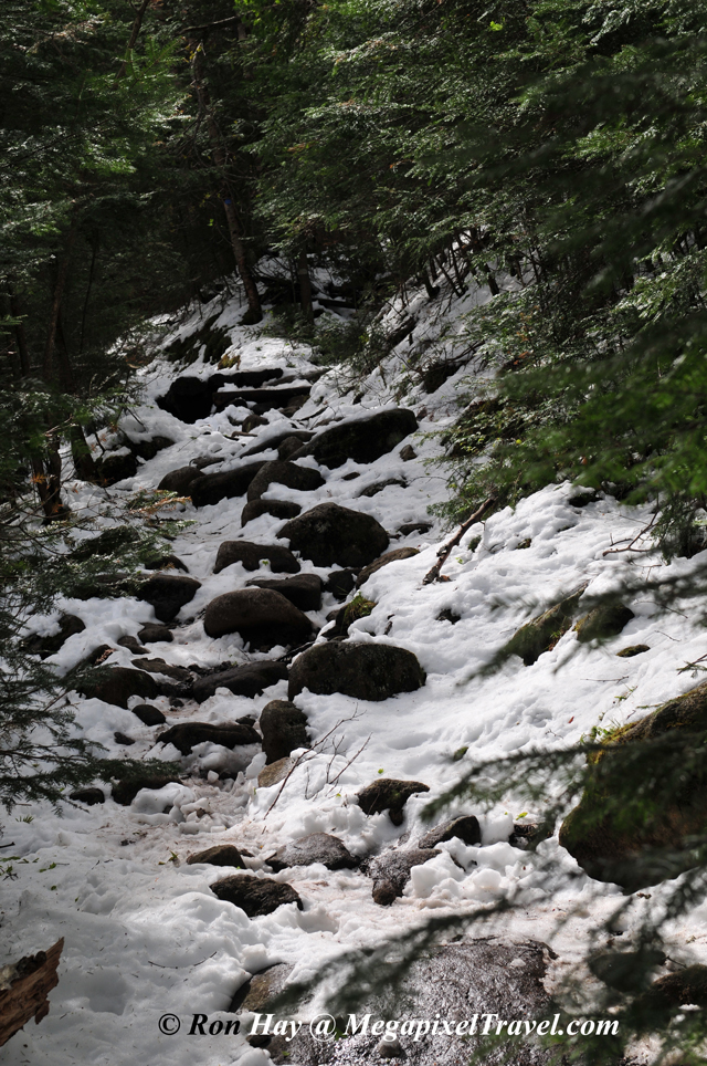 RON_3295-snow-on-trail