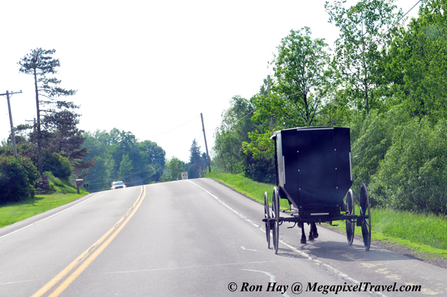 RON_3368-Amish-buggy