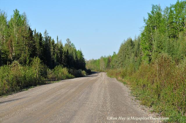 RON_3431-Logging-road