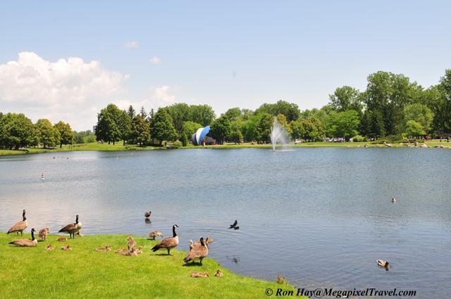 RON_3577-Andrew-Hadyn-park