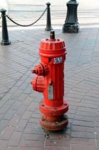 DSC_7425-hydrant